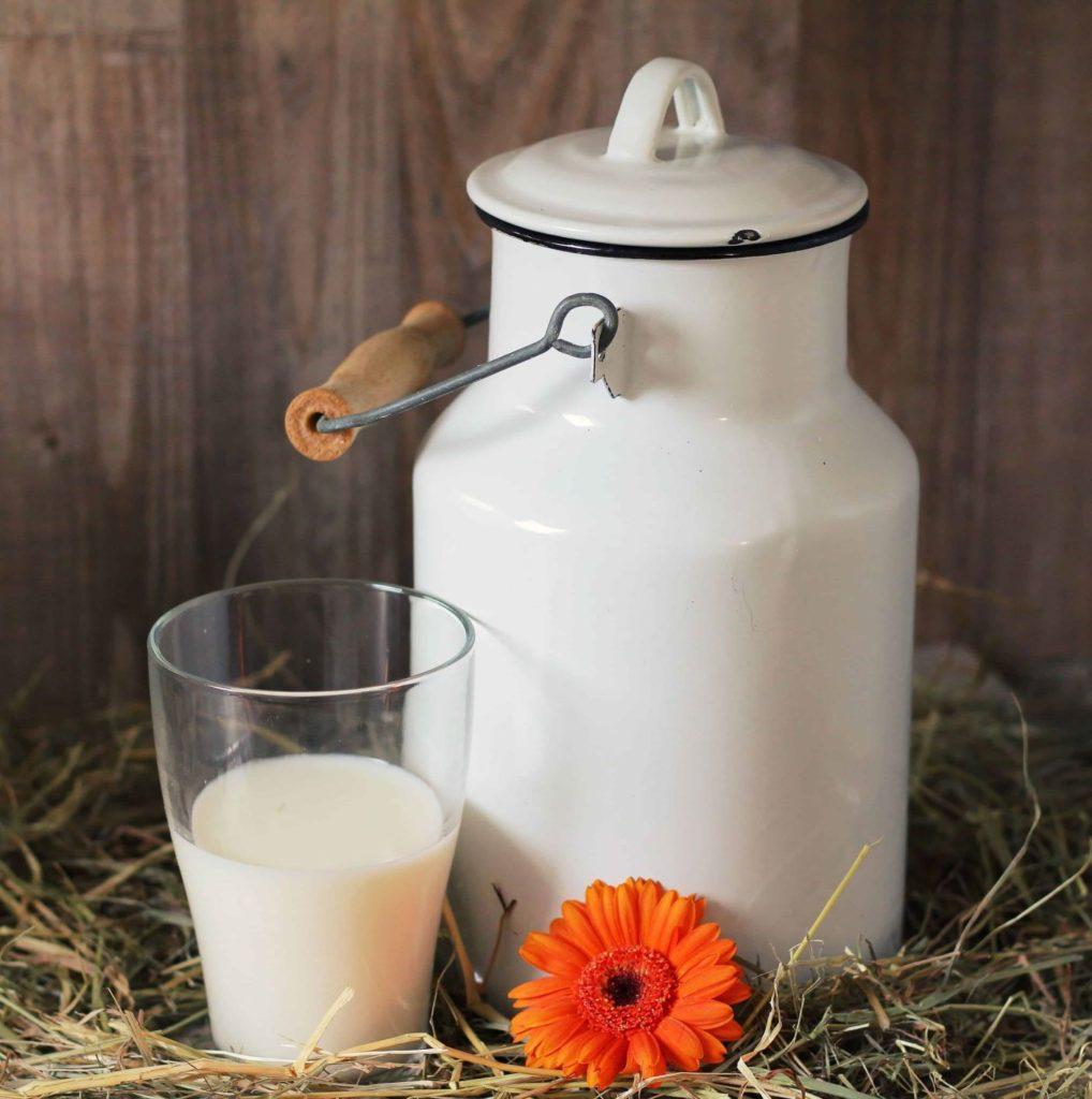 Von Milch Und Finsternis